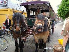 リューネブルクの観光馬車