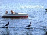 外アルスター湖でボート遊び